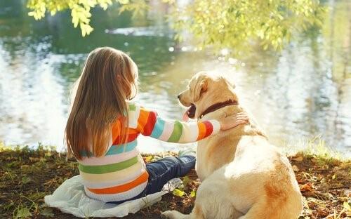 6 kinderfreundliche Hunderassen