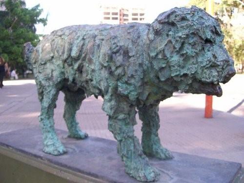 Fernando, der Straßenhund, der von Alberto Cortez verewigt wurde