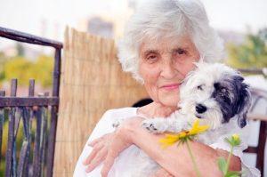 Hunde für ältere Menschen geben Selbstwertgefühl.