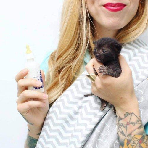 Kitten Lady: Die Frau, die Hunderte von Kätzchen rettet