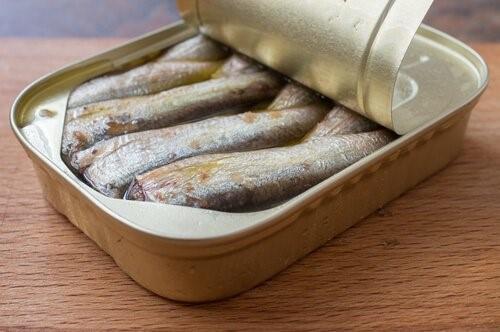Die BARF Diät - Fisch