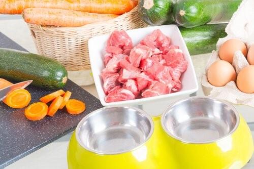 Die BARF Diät - Fleisch und Gemüse