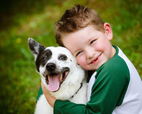 Hunderassen für Familien