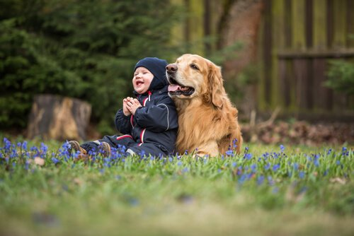 Hunderassen für Familien mit Kindern
