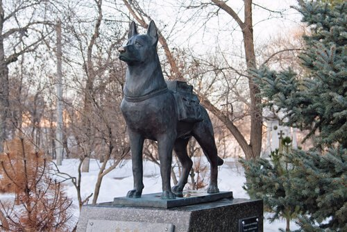 Denkmal für Such- und Spürhunde