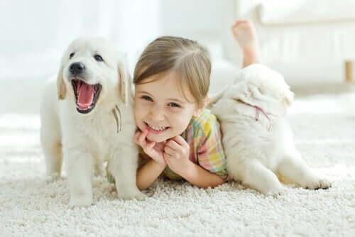 Mein Kind wünscht sich zu Weihnachten ein Haustier