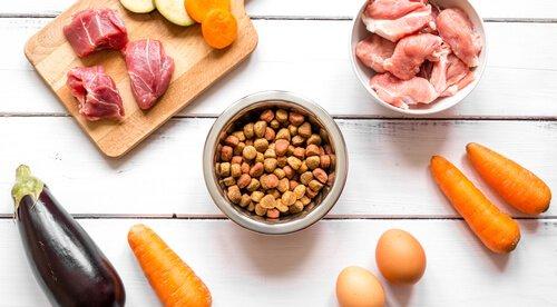Futtermittel mit Hausgemachtem kombinieren