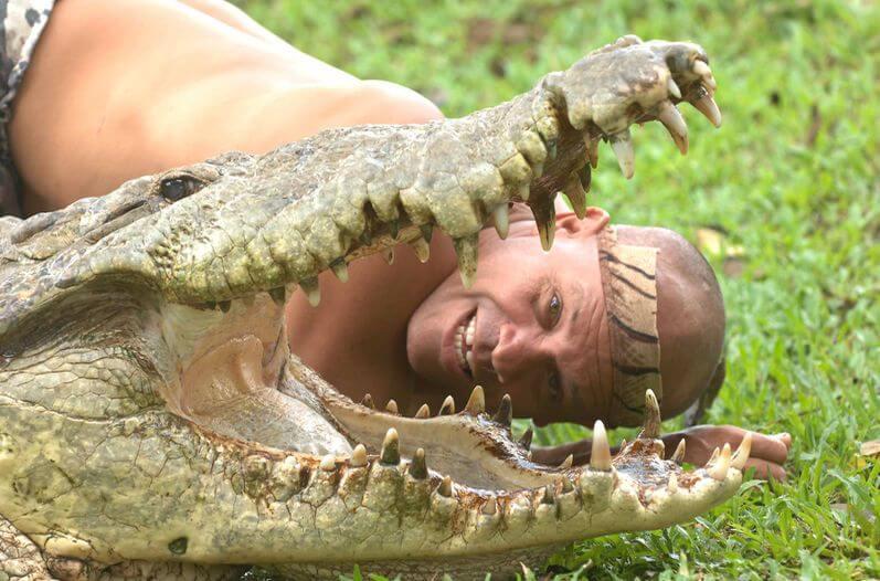 Krokodil und Mensch