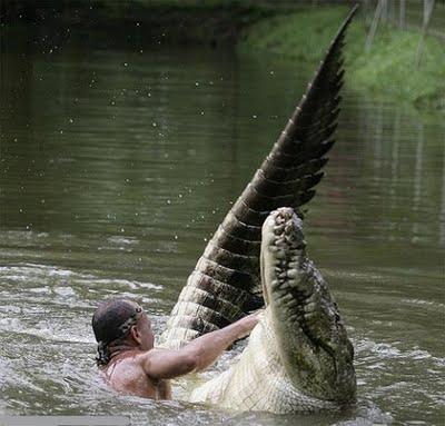 Mensch und Krokodil