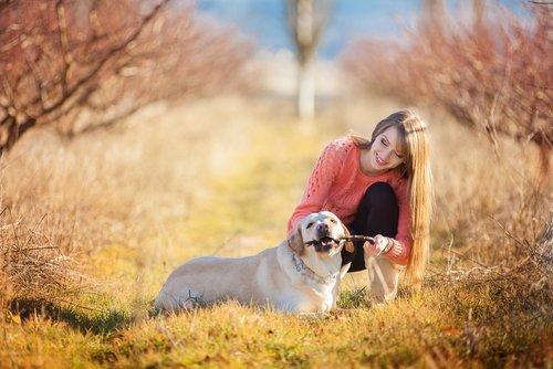 Spiele und Aktivitäten für deinen Hund, mit einem Stock spielen