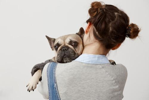 Hunde werden nicht gerne umarmt