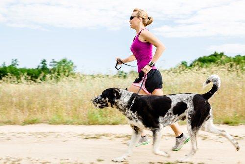 Fitness mit dem Hund macht Spaß und fördert die Gesundheit
