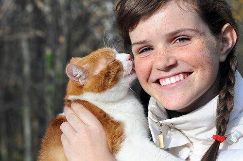 Katze leckt das menschliche Gesicht ab