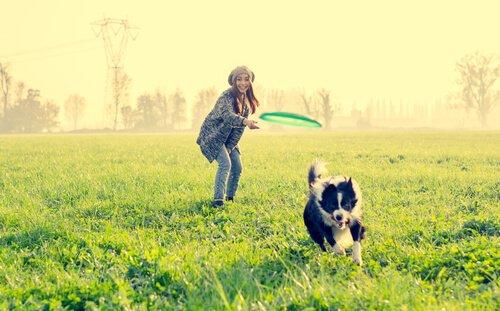 9 lustige Aktivitäten für deinen Hund