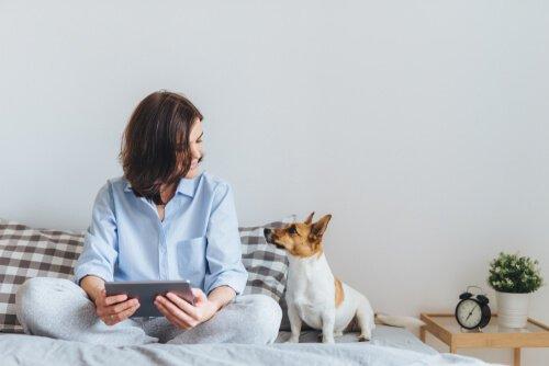 Hund sitzt neben Frauchen im Menchenkörbchen