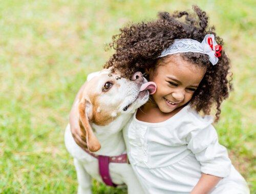 Wie sollten sich Kind und Hund zueinander verhalten?