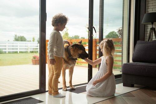 Kinder streicheln Schäferhund