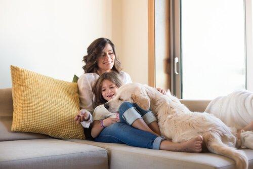 Mutter, Kind und Hund