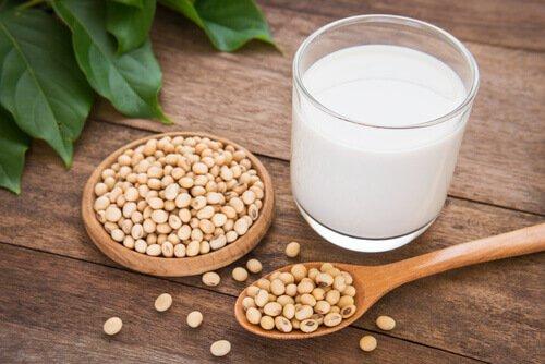Pflanzliche Getränke, eine Alternative zur konventionellen Milch