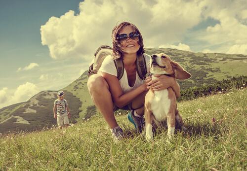 5 Reiseziele für Hundebesitzer in Europa