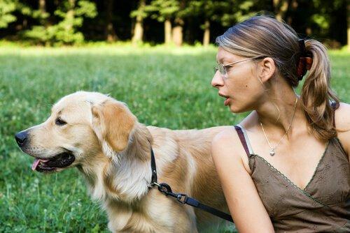 Tipps und Ratschläge zur Aufmerksamkeit bei Hunden