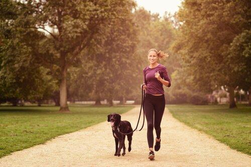 Fitness mit dem Hund
