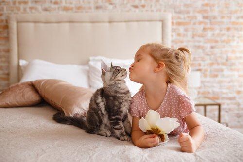 Kind und Katze küssen sich auf Bett