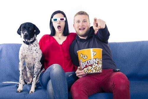 Filme für dich und deinen Hund