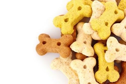 Snacks, die du deinem Hund nicht geben solltest