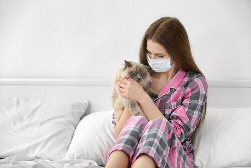 Allergisch gegen Katzen? Symptome