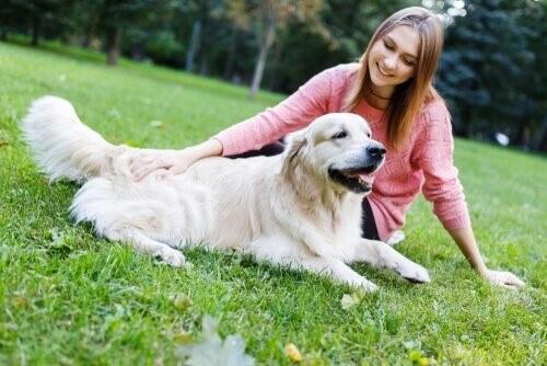 Wie kannst du deinem Hund dabei helfen, sich zu beruhigen?