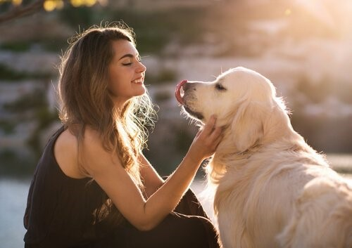Hund-Besitzerin