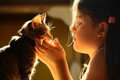 Mädchen-Katze
