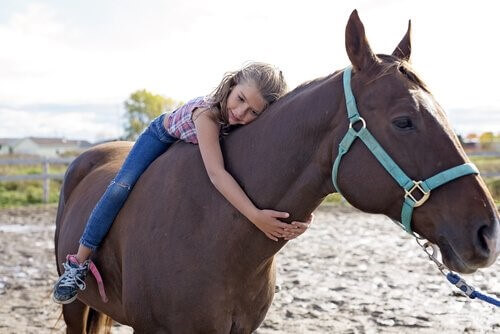 Pferd-Mädchen