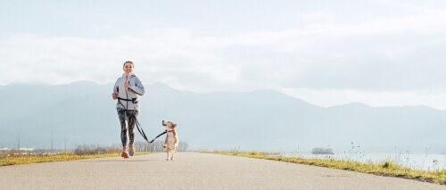 Vorteile des Trail Running mit Hund