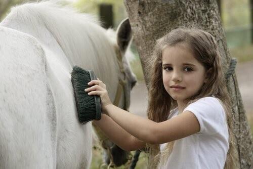 Welche tägliche Pflege benötigt dein Pferd?