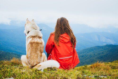 Die Gesellschaft eines Haustieres macht dich glücklich