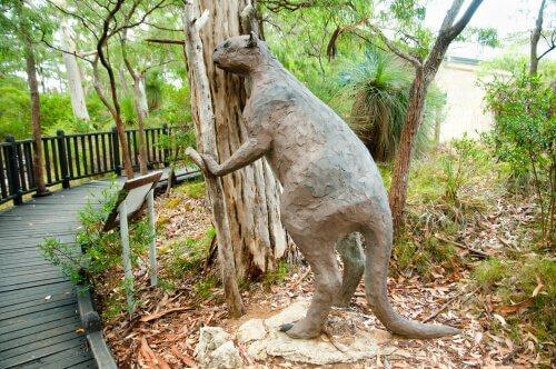 Riesenkänguruh