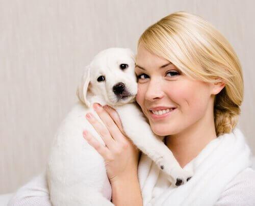 Warum sehen sich Hunde und Besitzer ähnlich?