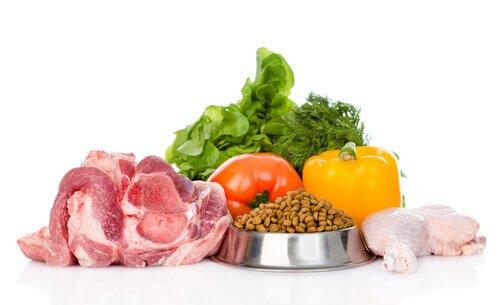 Biofutter für Haustiere?