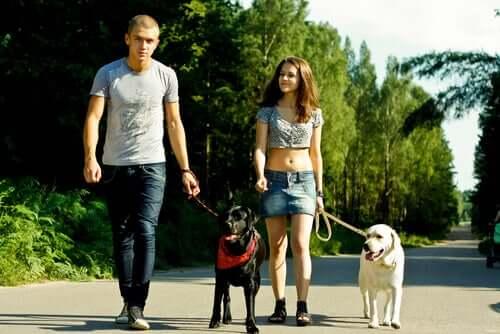 Tägliches Gassigehen als Teil von Fitness für das Haustier und den Menschen