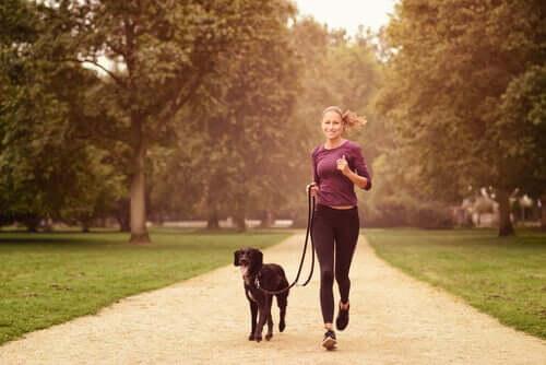 Bewegung mit dem Hund ist gesund