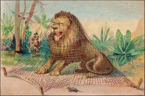 Der Löwe sitzt im Netz gefangen