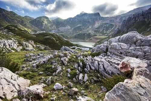 Wo kann man in Spanien Wildtiere beobachten?