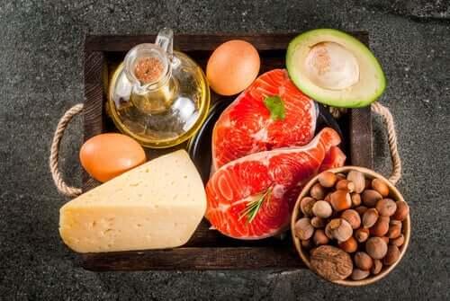 Barf Ernährung mit Omega 6