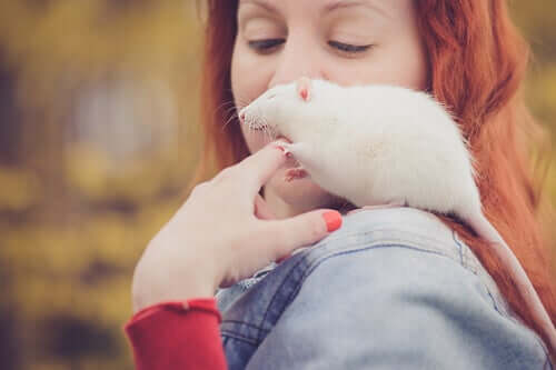 Frau trägt eine Ratte auf ihrer Schulter