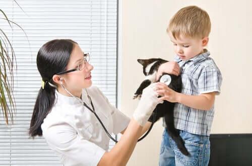 Kind und Katze beim Tierarzt
