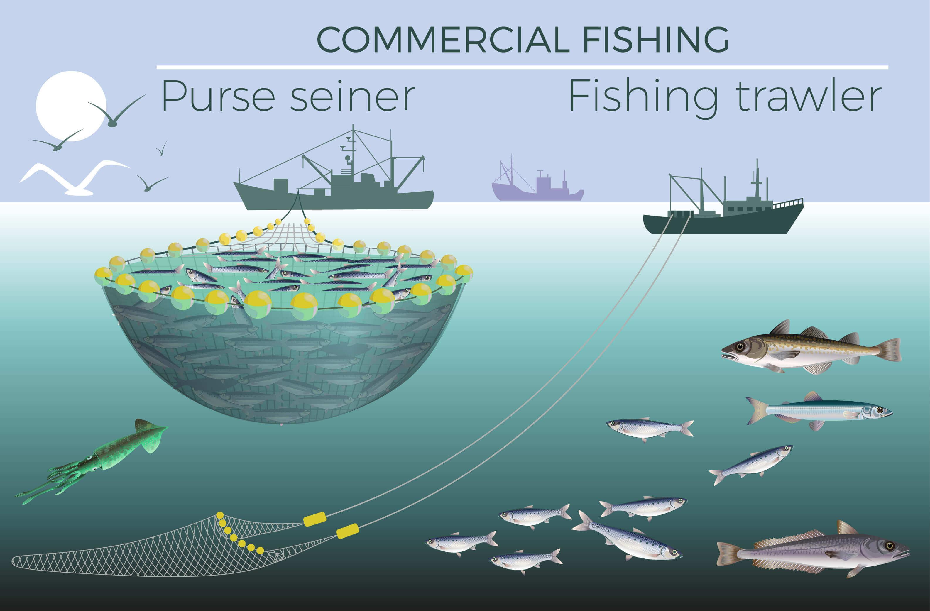 Fischereibetrieb