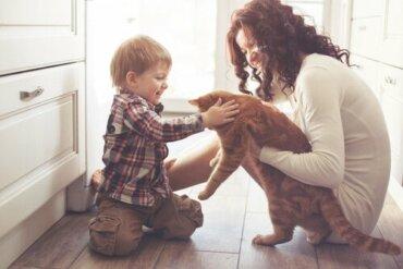 Einfluss von Haustieren auf unser Leben