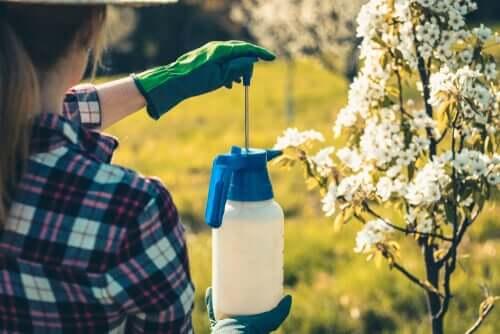 Umweltverschmutzung: Pestizide im Garten